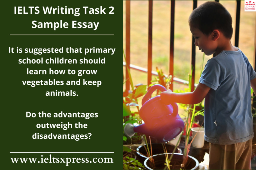 It is suggested that primary school children should learn how to grow vegetables and keep animals ielts essay ieltsxpress